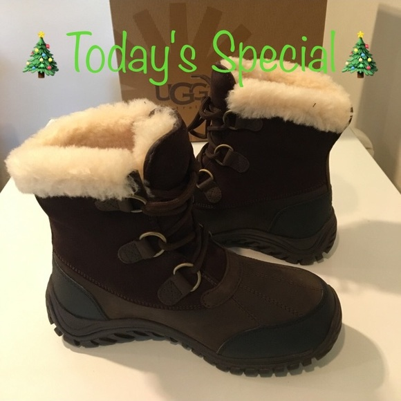 616cd9f5d6e New Classic Ugg Ostrander brown short laced boots NWT